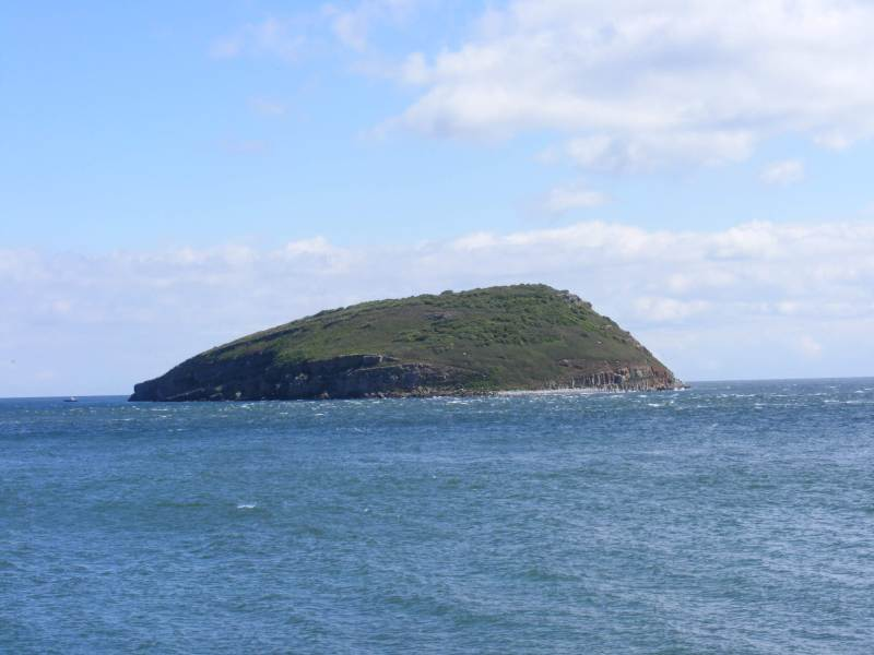 Puffin Island, taken from aboard a puffin island cruise