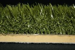 puregrass