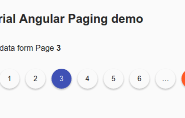Angular Material Design Pagination