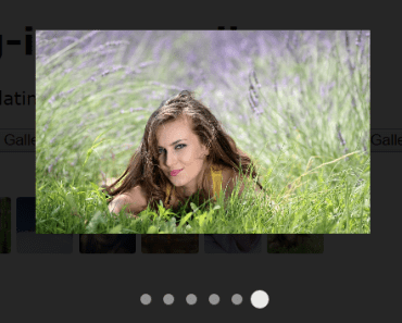 Angular Inline And Modal Image Gallery