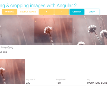 Resizing And Cropping Images With Angular 2