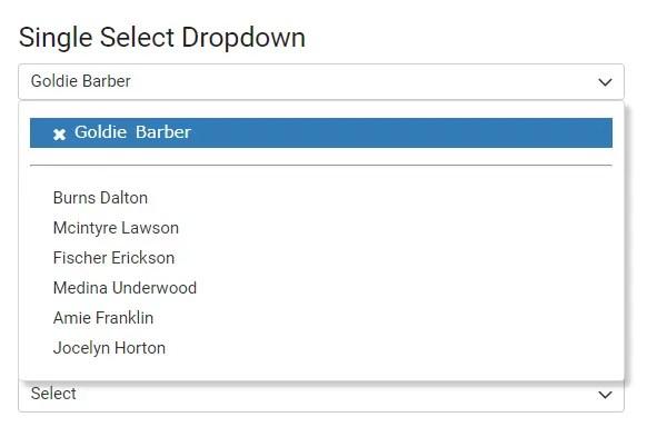 Custom Dropdown Component For Angular 2+ - ngx-select
