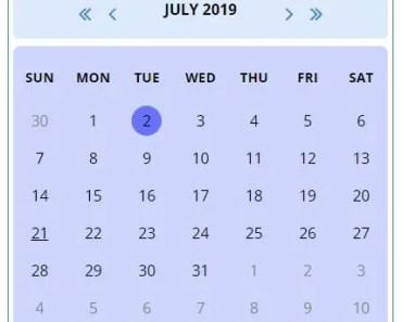 Multi-language Calendar Component For Angular - nw-calendar