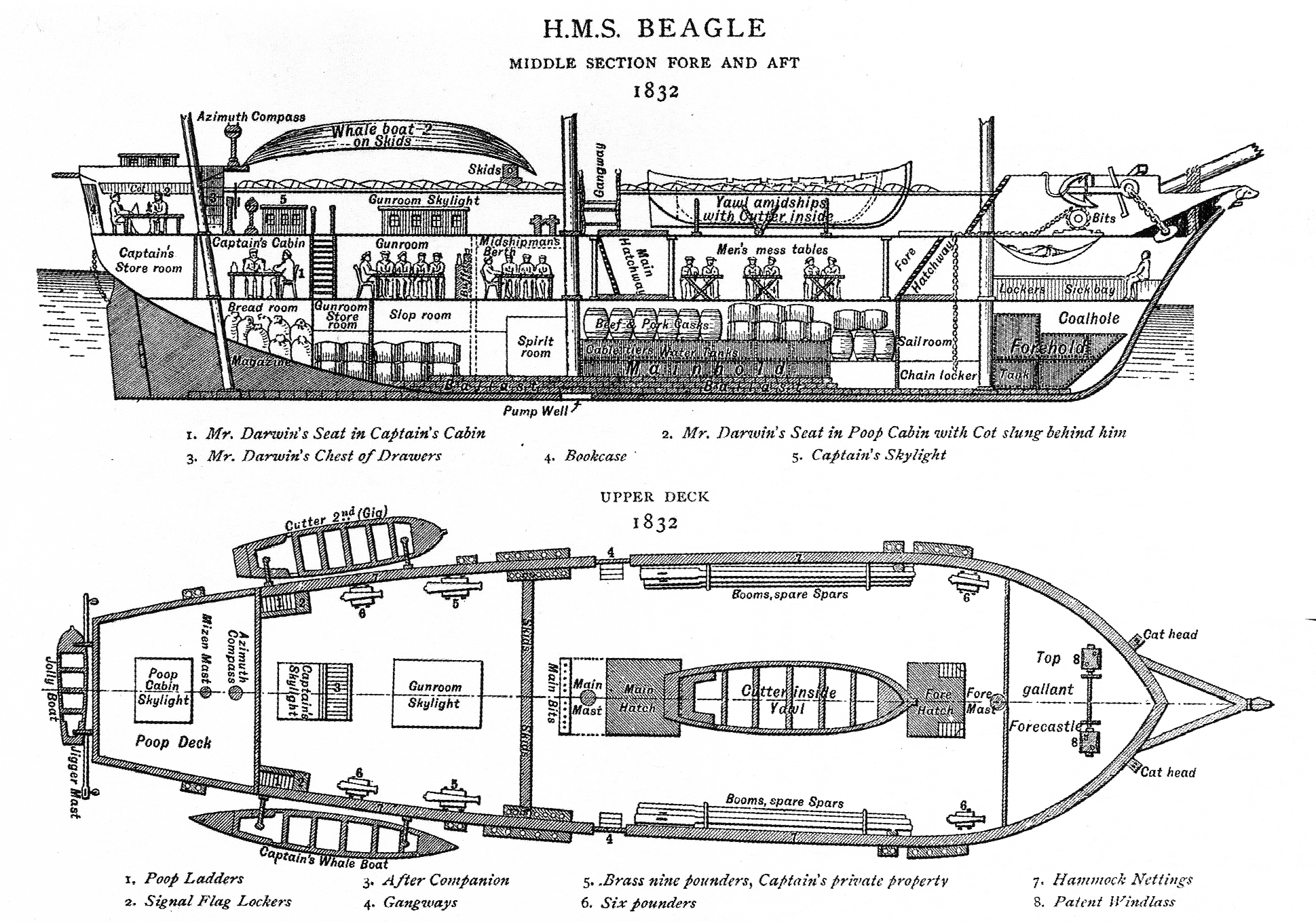 Hms Beagle With Plans