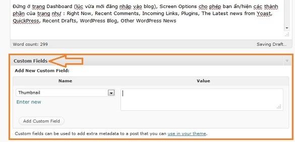Custom Fields trong WordPress 3.1