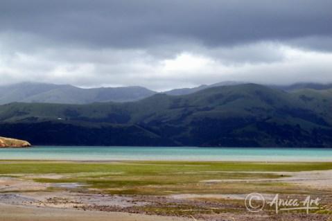 New Zealand - Dec 2011-14