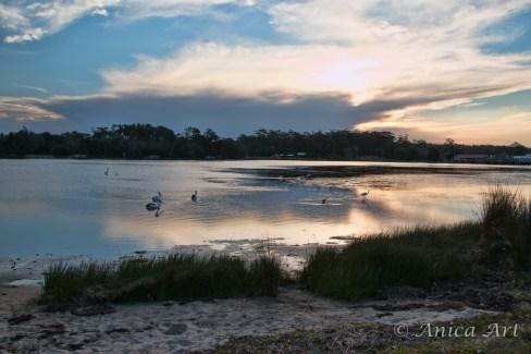 Burrill Lake -21