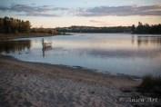 Burrill Lake -4