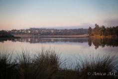 Burrill Lake -6