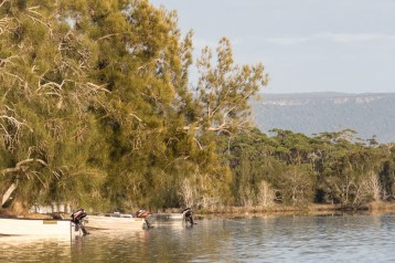 Peaceful dawn at Lake Conjola-2