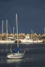 Ulladulla Harbour this afternoon-1