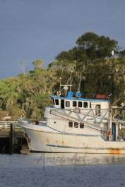 Ulladulla Harbour this afternoon-2