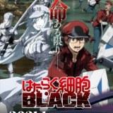 『はたらく細胞BLACK』アニメ制作スタッフ陣よりコメントが到着!