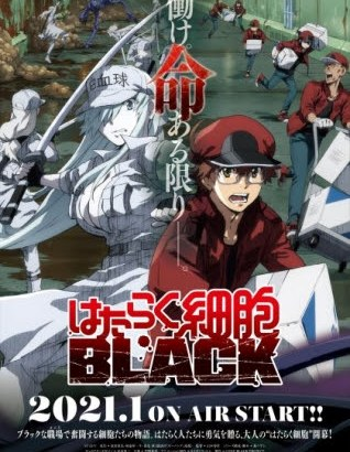 『はたらく細胞BLACK』白血球(好中球)役 声優:日笠陽子コメント到着!【プロフィール付】