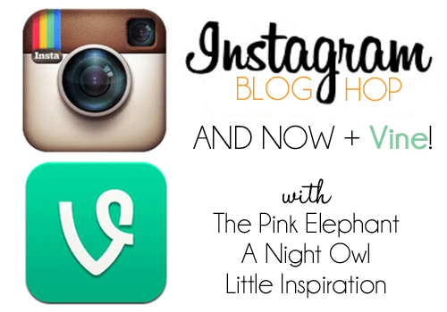 The Instagram + Vine Blog Hop
