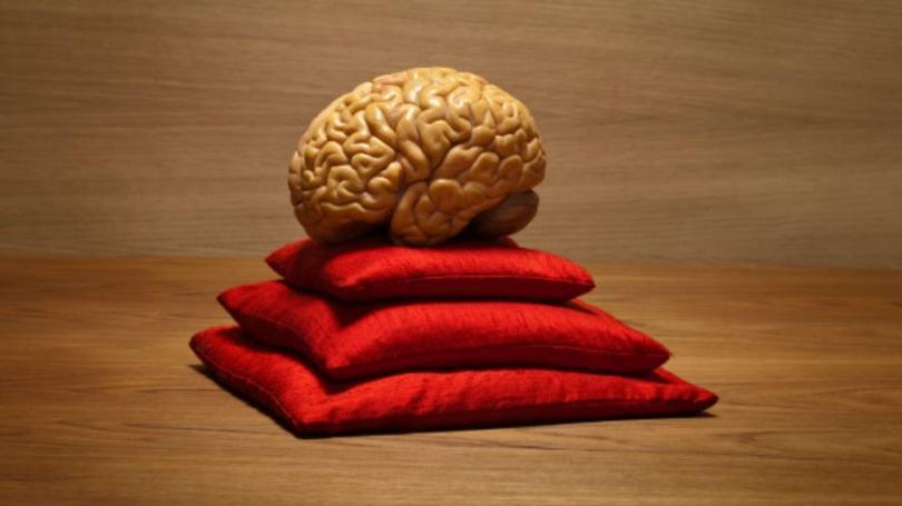 мозг, способности, способности мозга, сознание, мозг и сознание