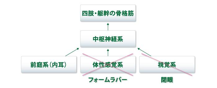 グラビコーダ GW-10 – アニマ株式會社