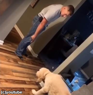 【悲しい…】飼い主が犬にお説教。シュンとして動きがスローになる