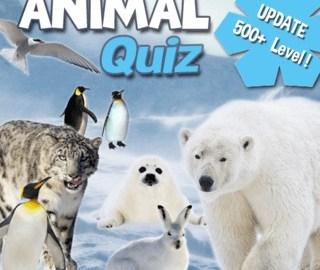 Animal-Quiz, the game