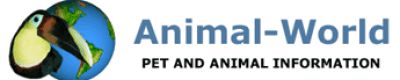 Animal-World