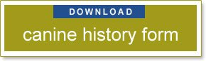 download Canine History Form