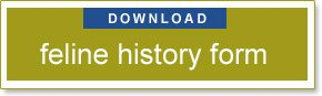 download Feline History Form