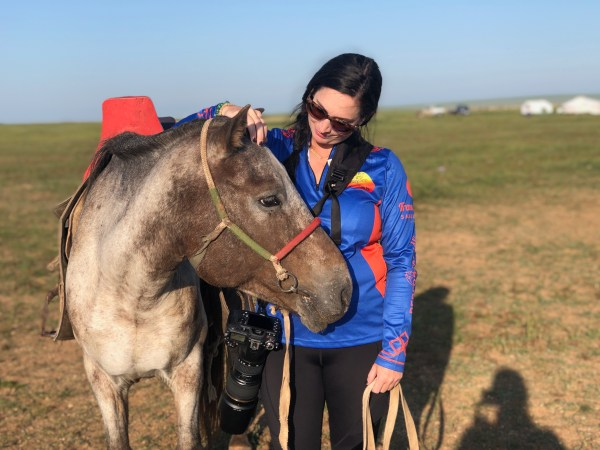 Equine Massage Therapy Heather Wallace