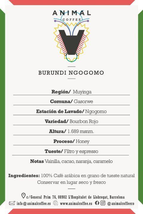 Café de especialidad africano Burundi notas de cata y detalle