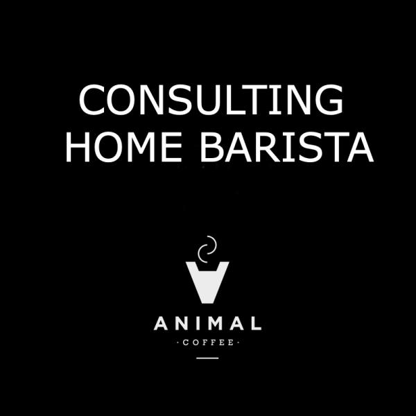 Consultoria home barista- café en casa