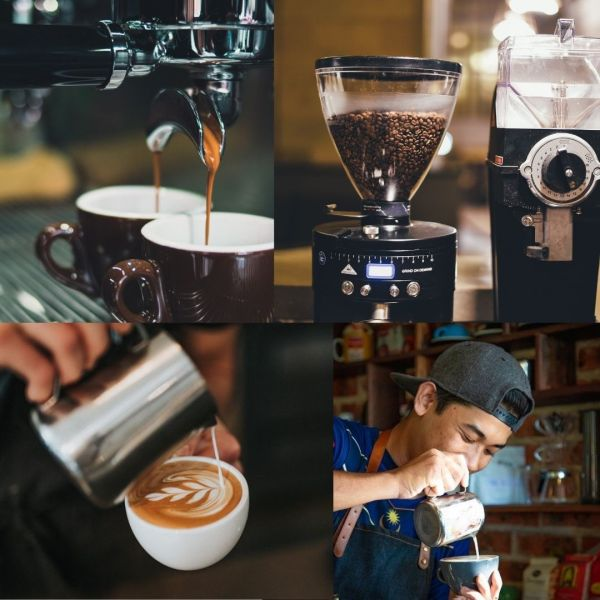 Curso de barista intensivo en Barcelona- Animal Coffee