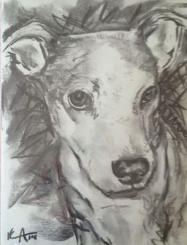 charcoal drawing of a dog