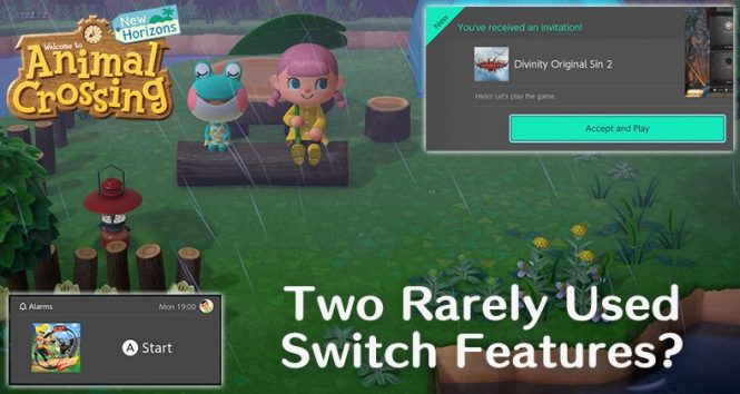 Two Rarely Used Switch Features Animal
