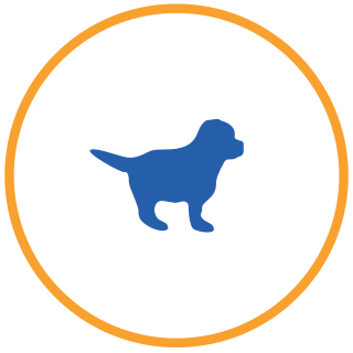 piani salute cane cucciolo