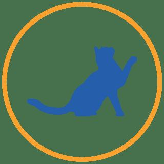 piani salute gatti adulti