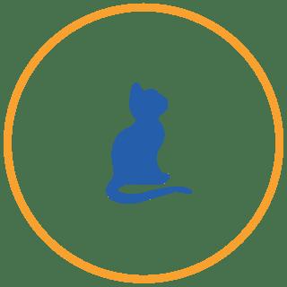 piani salute gattini
