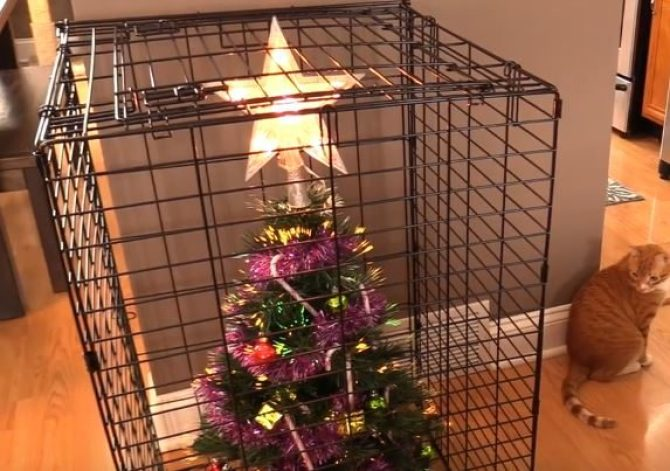 11-how-these-people-saved-christmas-trees-is-brilliant