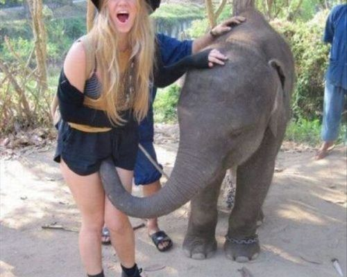 8-hilarious-moments-between-girls-and-animals