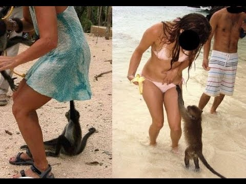 9-girls-and-monkeys-perfectly-timed-pics