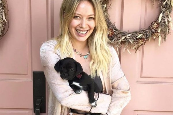 adopted-puppy-2