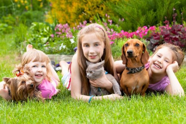 pets-are-good-for-kids