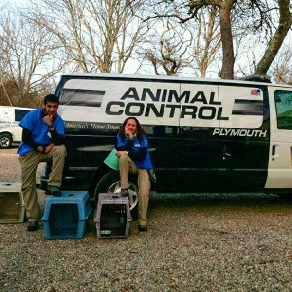 Javier trabajando con Animal Control - Plymouth