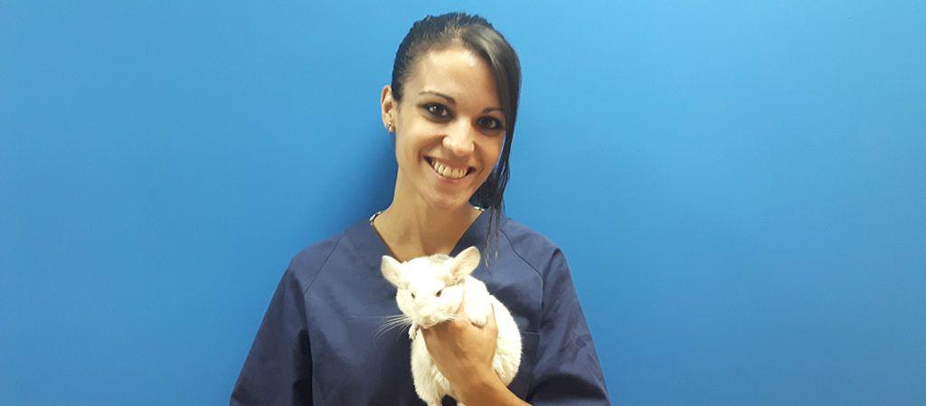 Imagen de Alicia, de la clínica Animales Exóticos 24h