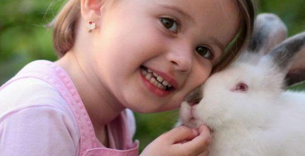Niña pequeña con un conejo de mascota