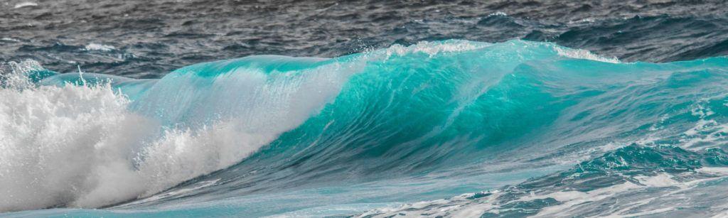 Imagen post dia mundial del agua