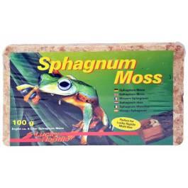 Musgo Spagnum LuckyRep