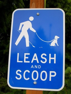 leash and scoop