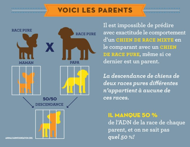 AFF_infographic_FRENCH_5