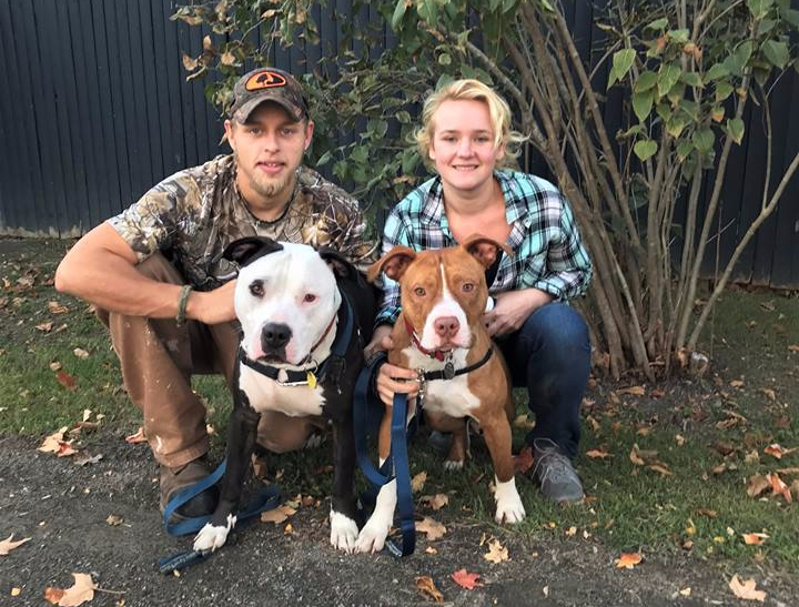 Junior and Brando adopted