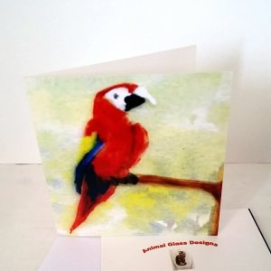 Macaw Parrot card with the bird perched on a tree