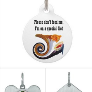 Personalised pet tags with animal art